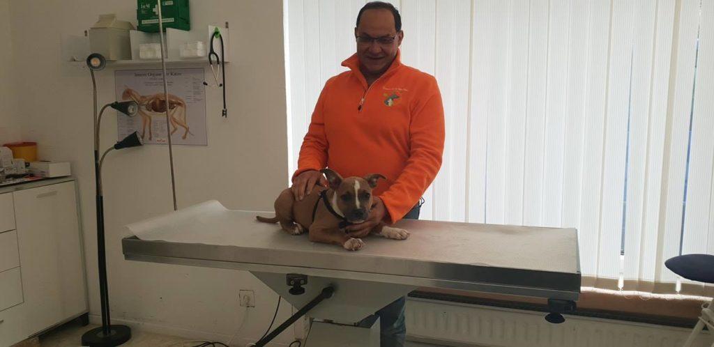 Haustierpraxis Doktor Jonas in Hannover Misburg-5